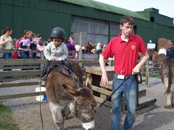 Ucai Naik Donkey, seronoknya!